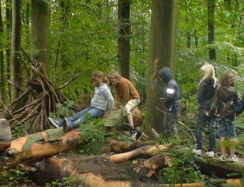 Spelen in het bos